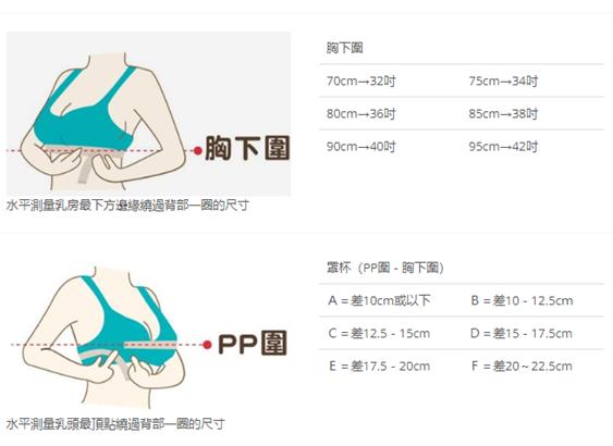 Bravado絲雅哺乳內衣PP圍胸下圍測量表
