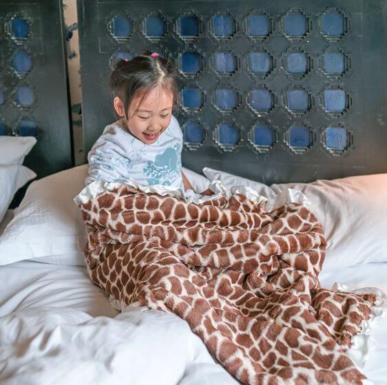 小公主的奇幻旅程者公若家的maxdaniel寶寶毯