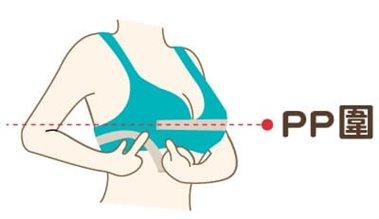 PP圍測量:水平測量乳頭最頂點繞過背部一圈的尺寸