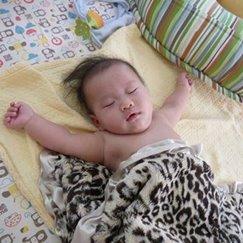 Max Daniel動物紋安撫巾美洲豹是寶寶的最好朋友